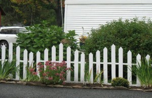 using pallets for a fence